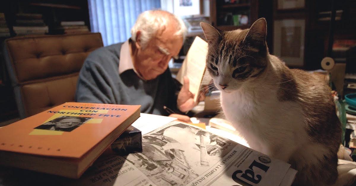 Los gatos que extrañan a Carlos Monsiváis