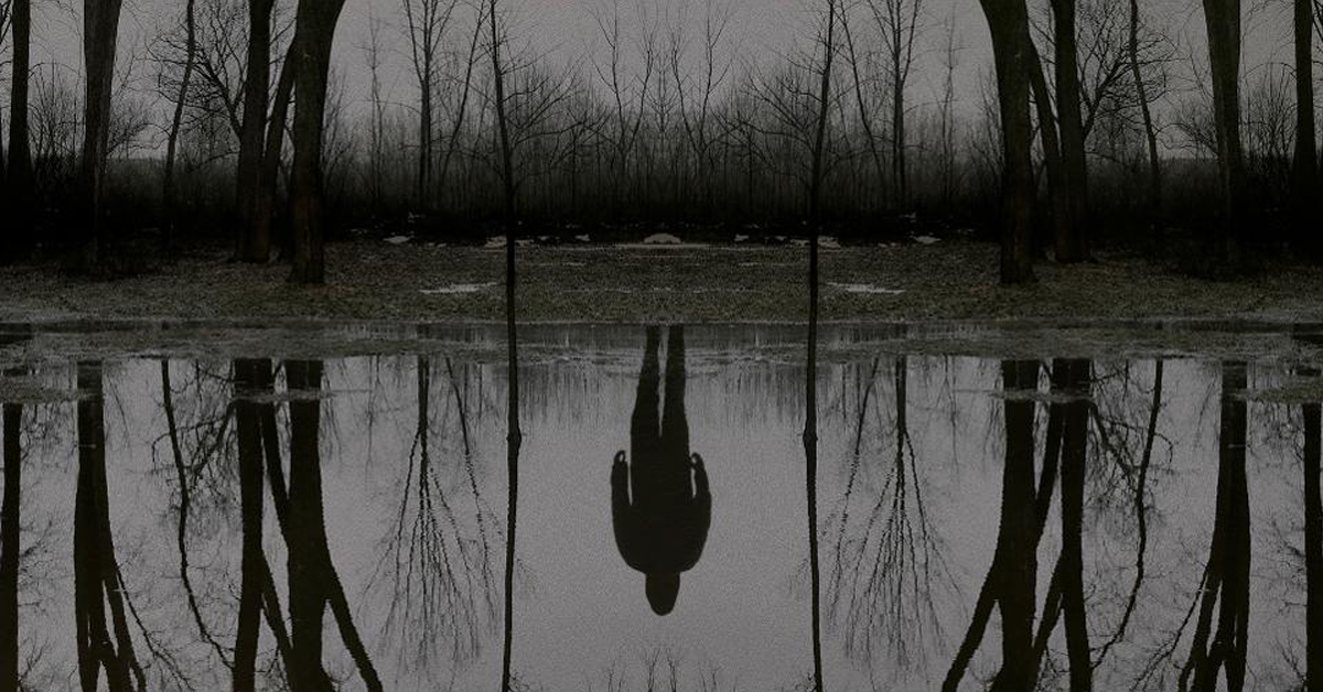 The Outsider: Horror, Misterio y Asombro