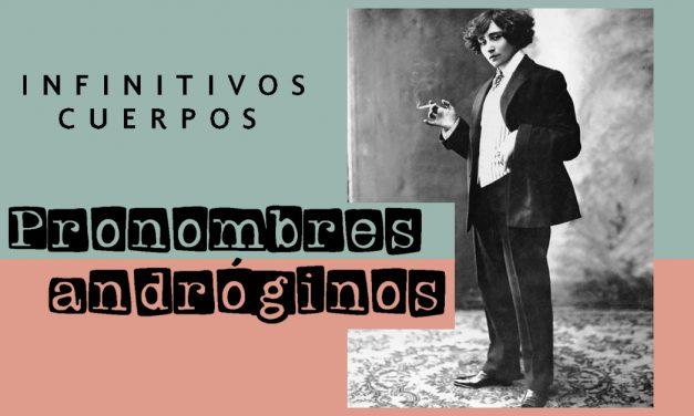 Pronombres andróginos
